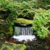 旭川の隣、東川町の湧き水を飲もう!「大雪旭岳源水公園」。